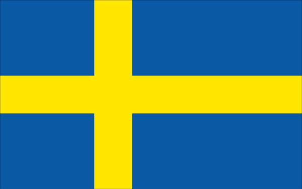 Sverige nära VM-guld i global konkurrens
